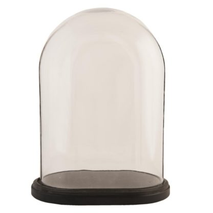 Globe-ovale